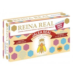 JALEA REAL INFANTIL JUNIOR 20AMP. ROBIS
