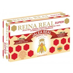 JALEA REAL SUPER 20AMP. ROBIS